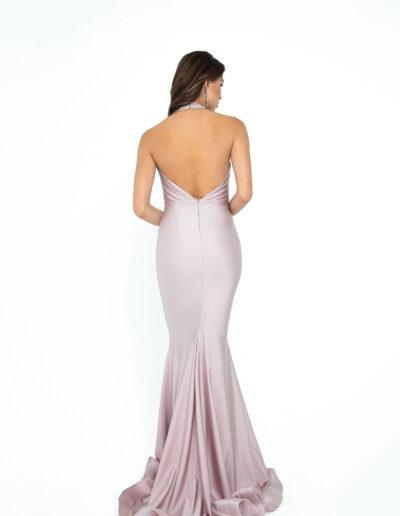 Atria blush dress back